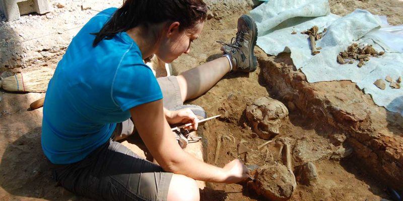 Digging out bones in Area 2000